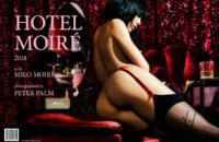 Kalender Hotel Moiré